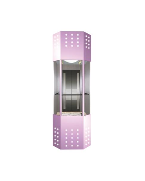 Observation Elevator FH-G10