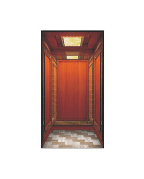 Home Elevator FH-H06