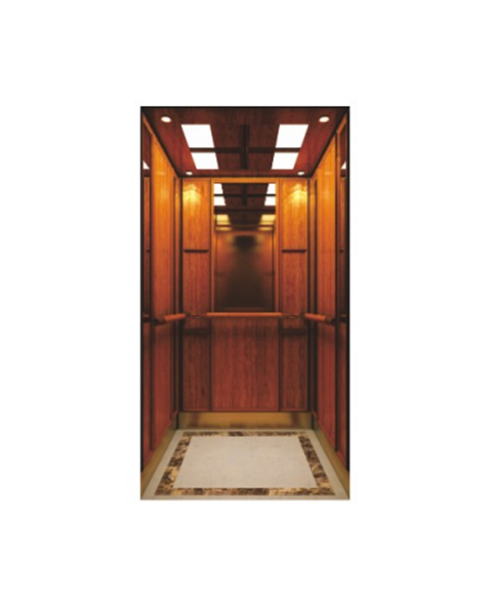 Home Elevator FH-H08